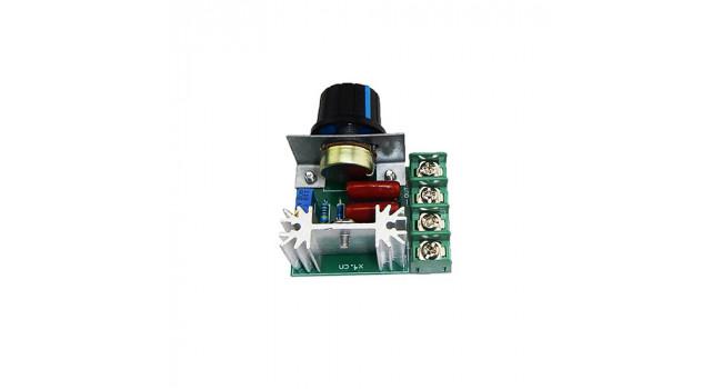 AC 2000W Controller - Module