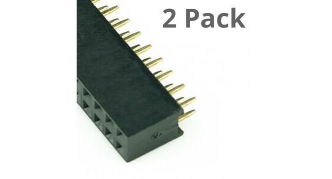 Connector, 2X40 Pin Dual Header, Female (2 Pack)